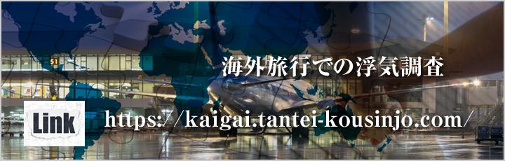 海外不倫旅行IPサイト